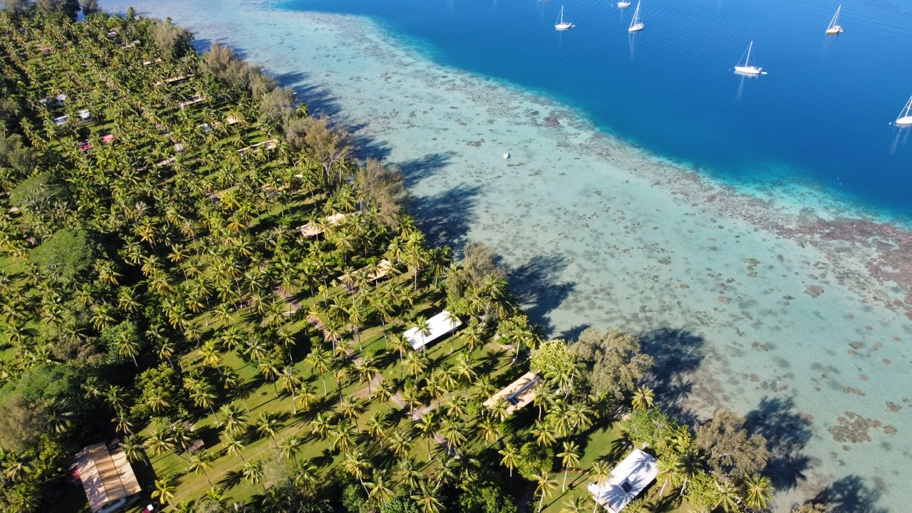 https://tahititourisme.cl/wp-content/uploads/2017/08/F9872219-3221-4A8A-AB92-EAA8BB762788.jpeg