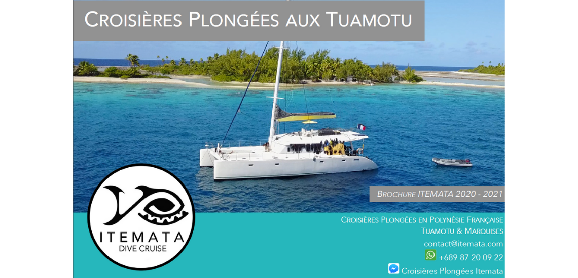 https://tahititourisme.cl/wp-content/uploads/2017/08/ITEMATA_1.png
