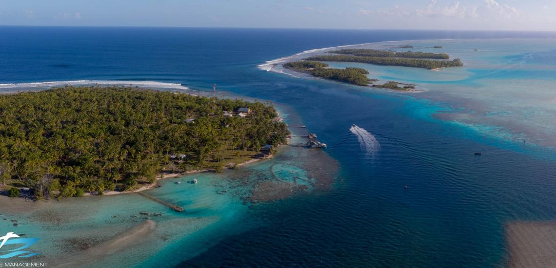 https://tahititourisme.cl/wp-content/uploads/2017/08/Tahiti-Dive-Management.png