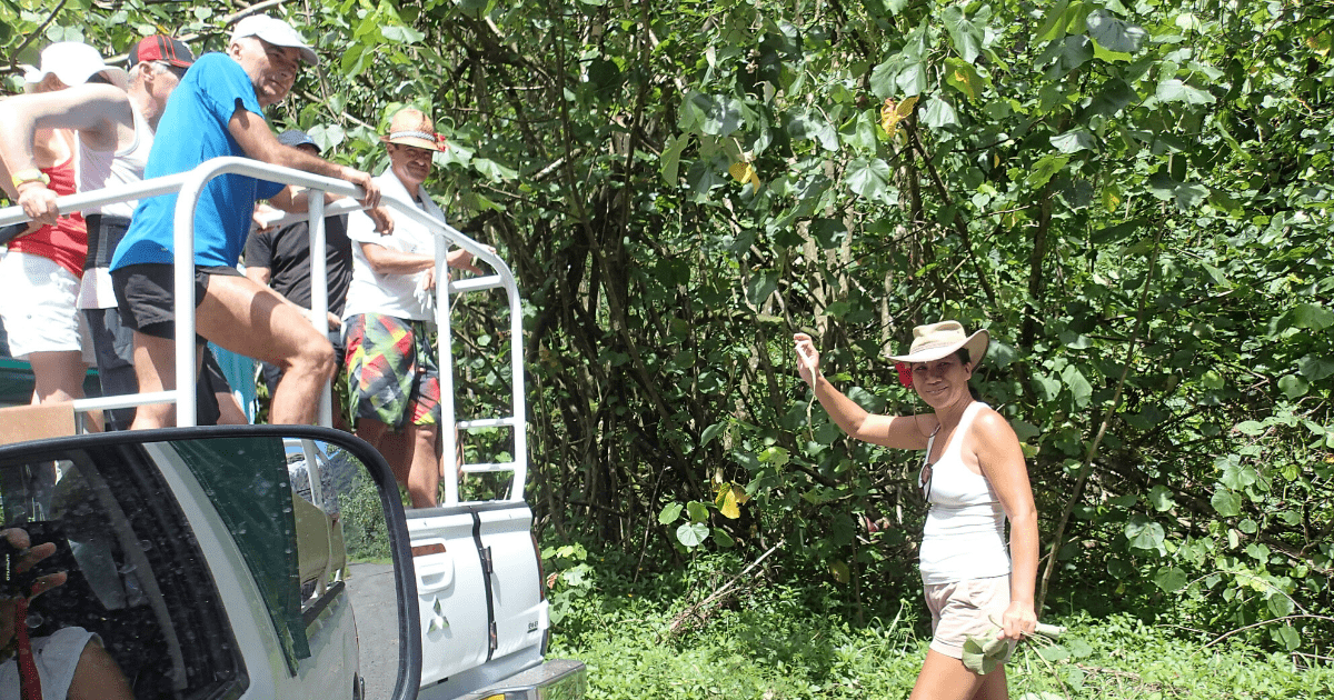 https://tahititourisme.cl/wp-content/uploads/2017/08/Tahiti-Safari-Expeditions_1140x500-min.png