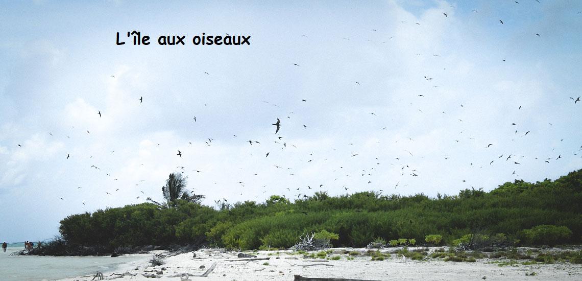 https://tahititourisme.cl/wp-content/uploads/2017/08/Tahiti-Voile-et-Lagon-photo-de-couv-2.jpg