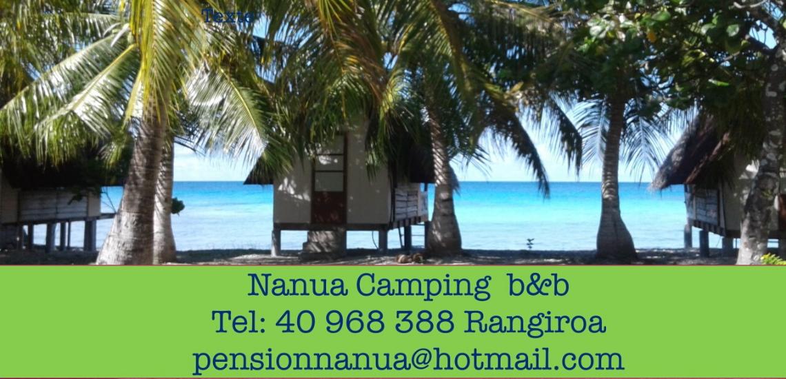 https://tahititourisme.cl/wp-content/uploads/2017/08/nanuacamping_1140x550.png