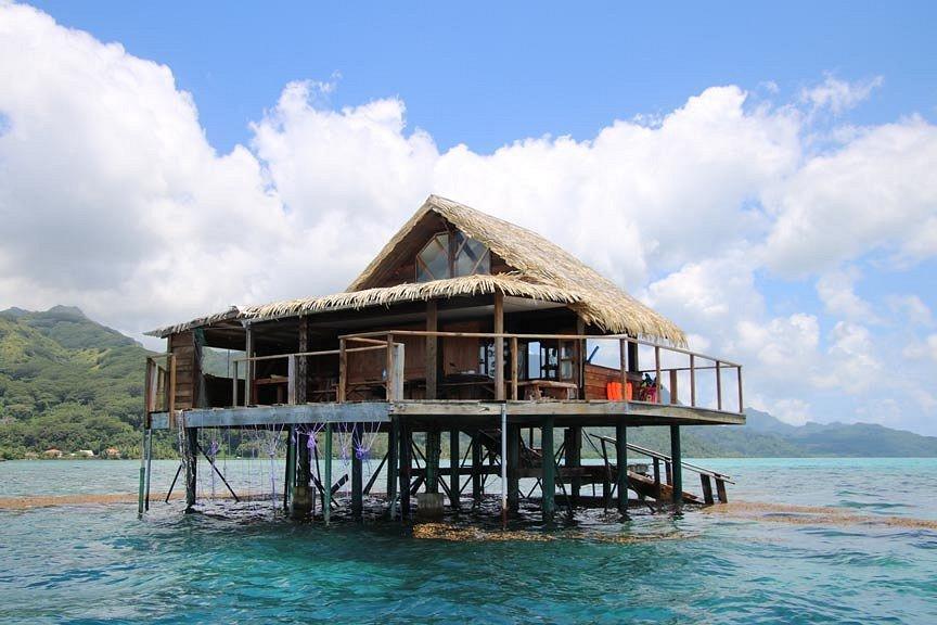 https://tahititourisme.cl/wp-content/uploads/2017/08/pearl-farm-house-or-hut.jpg