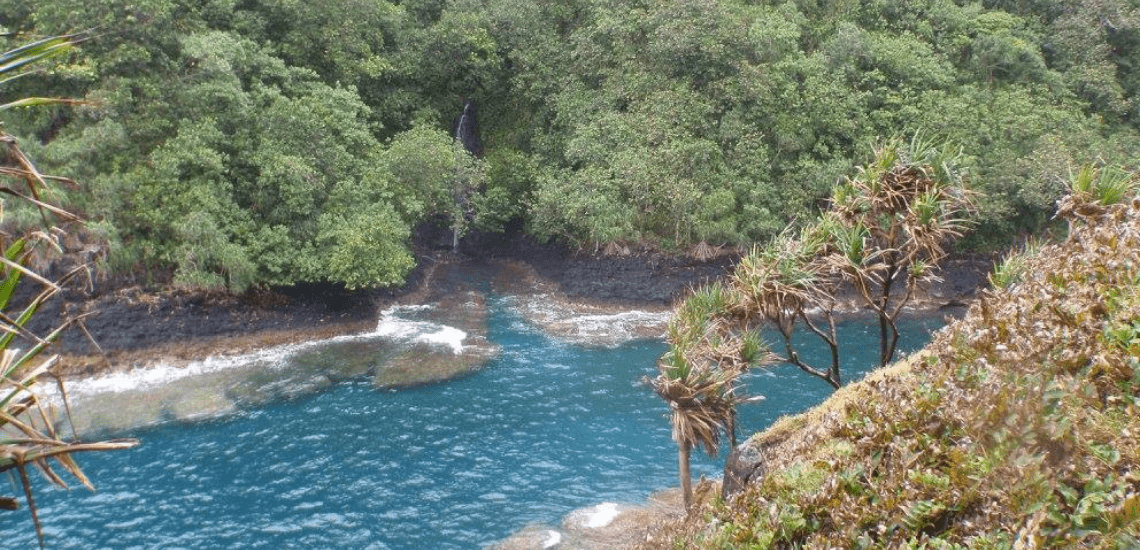 https://tahititourisme.cl/wp-content/uploads/2017/08/tahitirevatrekphotodecouverture1140x550.png