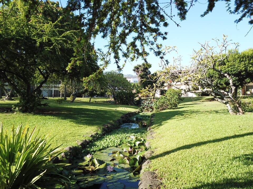 https://tahititourisme.cl/wp-content/uploads/2017/09/jardin-vue-1.jpg