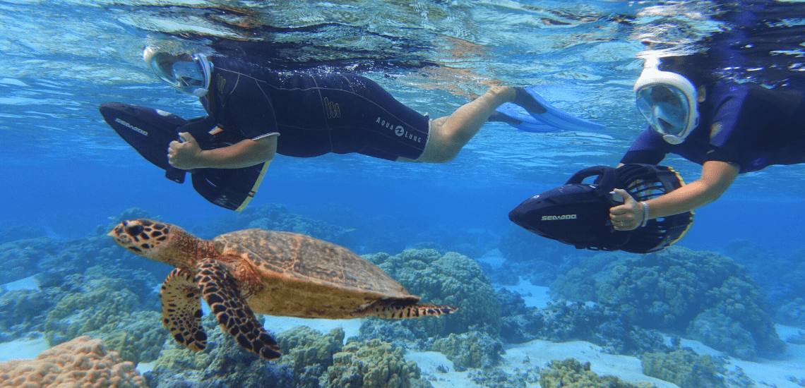 https://tahititourisme.cl/wp-content/uploads/2018/02/mooreawatergames_1140x5502-min.png
