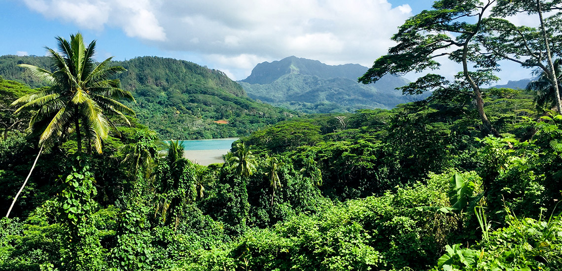 https://tahititourisme.cl/wp-content/uploads/2018/05/ACTIVITES-TERRESTRES-Green-Tours-Huahine-2.jpg