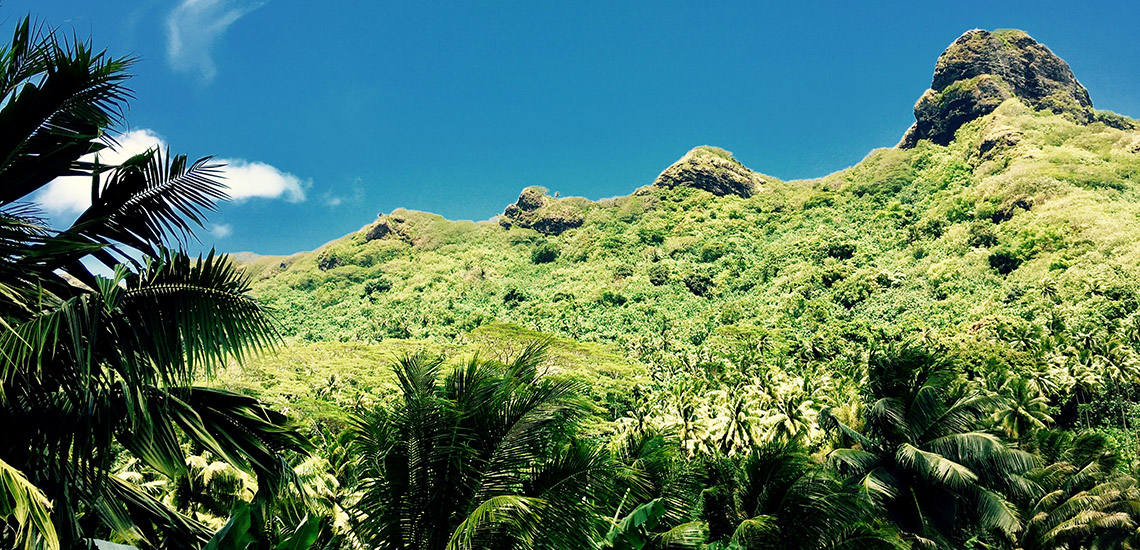 https://tahititourisme.cl/wp-content/uploads/2018/05/ACTIVITES-TERRESTRES-Green-Tours-Huahine-3.jpg