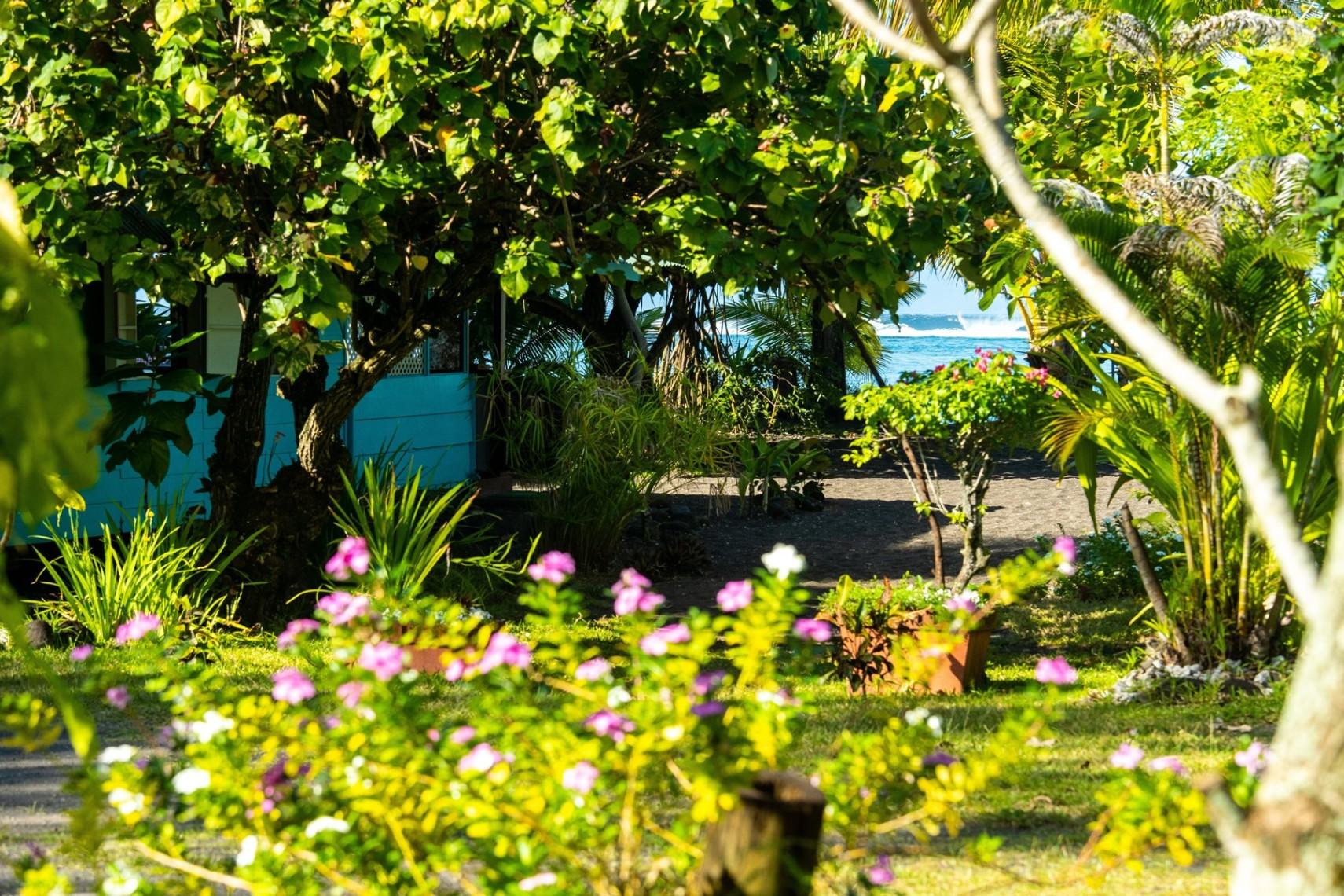 https://tahititourisme.cl/wp-content/uploads/2019/08/copie-tahiti-tourisme-800ko-1.jpg
