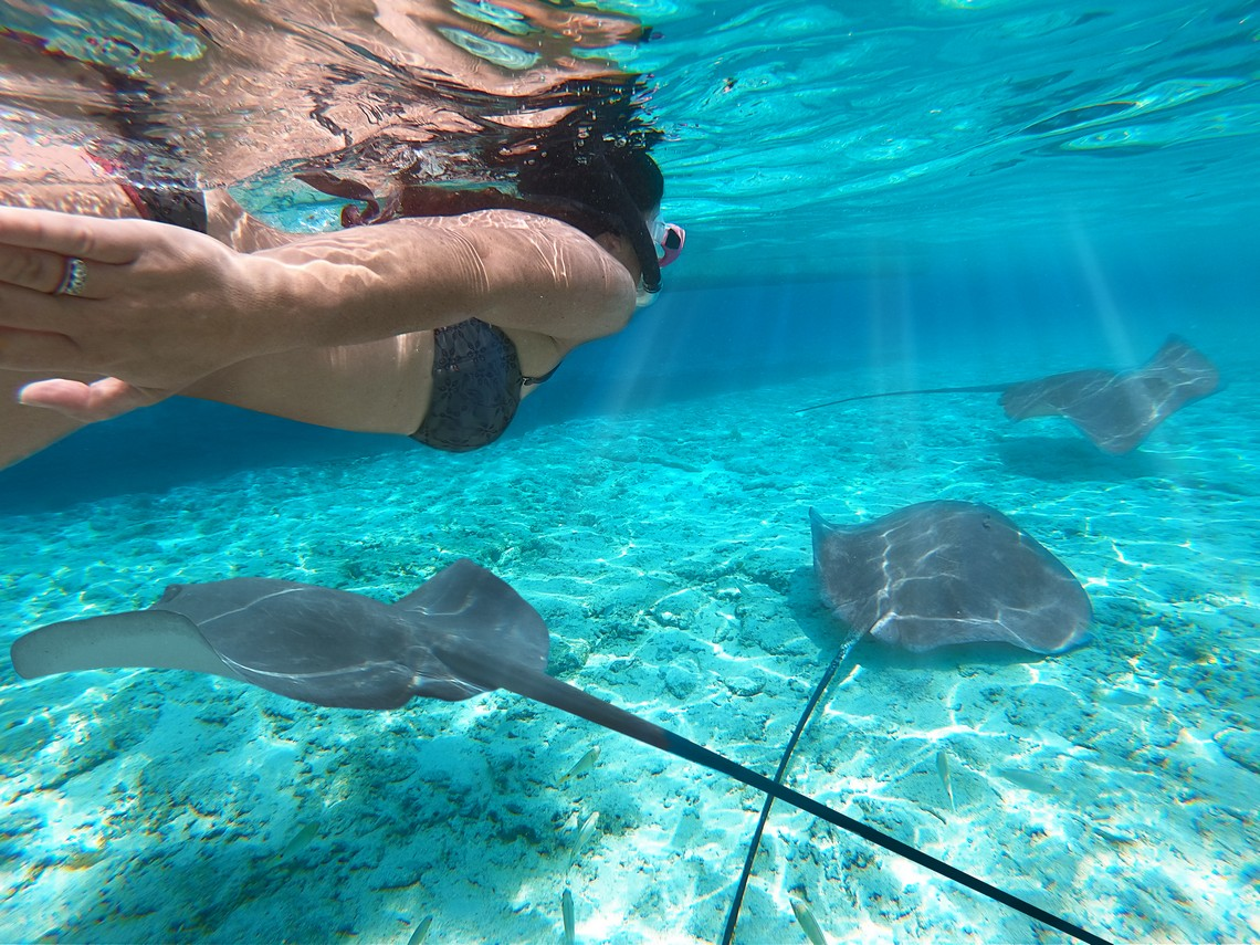 https://tahititourisme.cl/wp-content/uploads/2020/11/Lagoon-Srvice-Bora-Bora-2.jpg