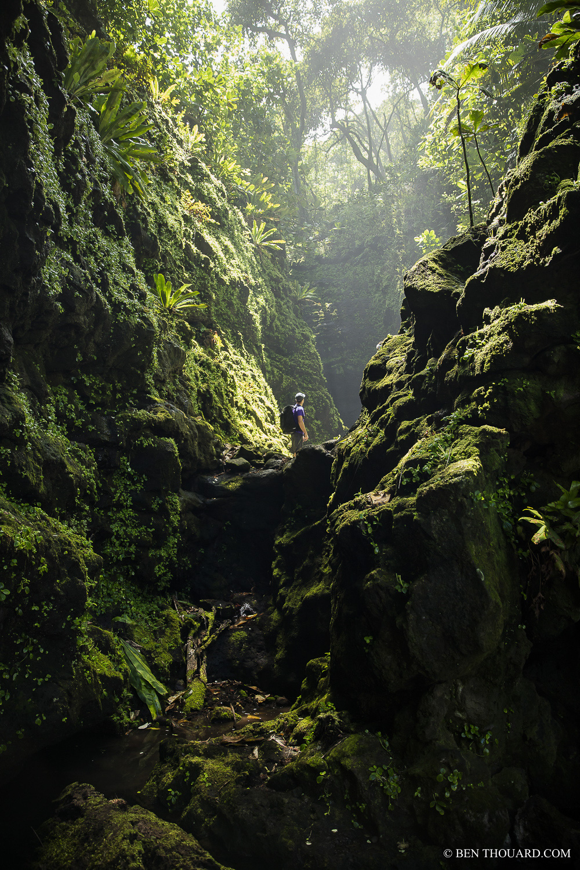 https://tahititourisme.cl/wp-content/uploads/2021/04/benthouard_tepari_hike_0242.jpg
