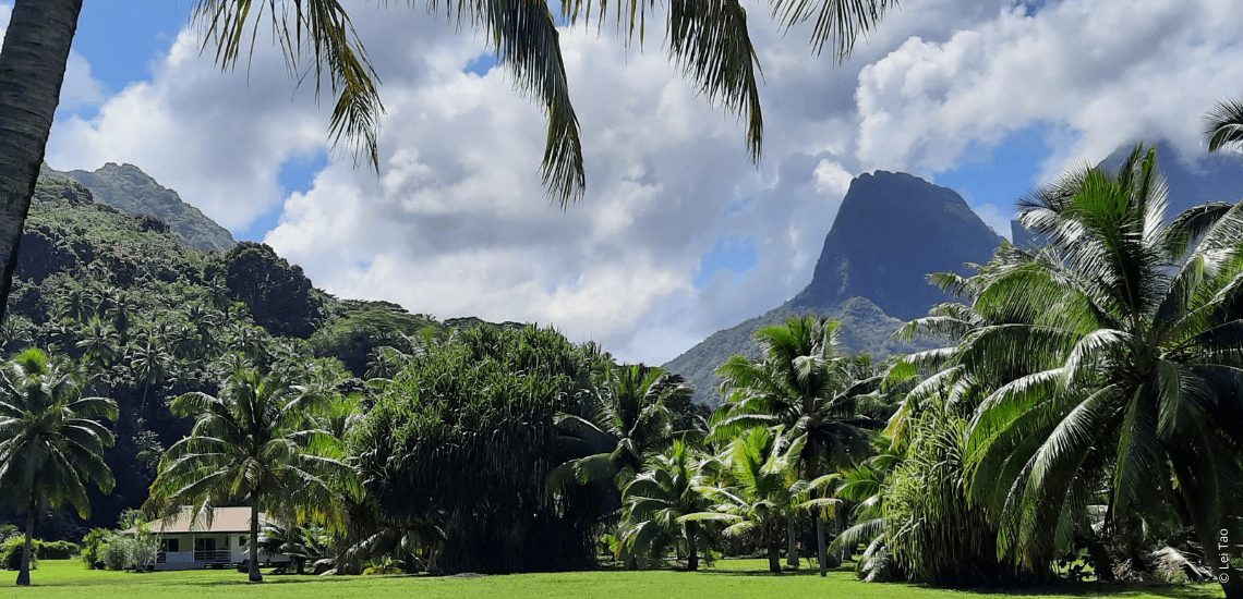 https://tahititourisme.cl/wp-content/uploads/2021/05/residenceapaura_1140x550-1-min.png
